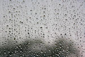 Trainingsausfall wegen Regens | Foto: M. Sandner